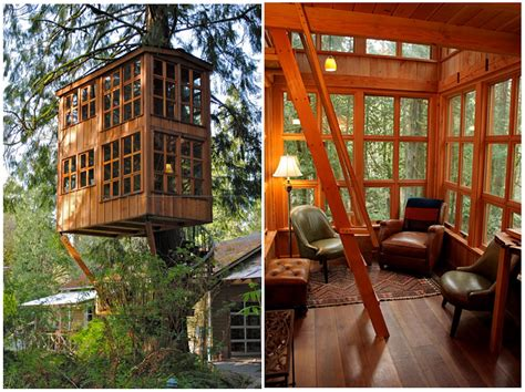 treehouse house these are some stunning pictures of tree houses around the