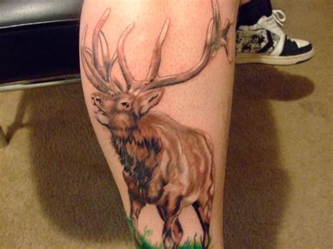 bull elk tattoo designs animal elk calf ideas elk