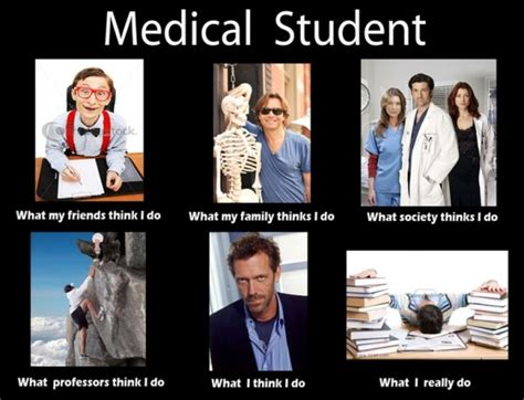 Mba Student Memes by These Are The Top Graduate Schools In Illinois