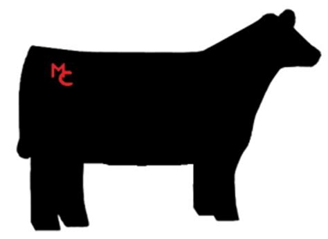 Show Heifer Outline by The Gallery For Gt Show Steer Silhouette