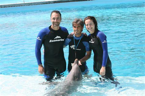 popolare mezzogiorno lavora con noi raul bova come un delfino
