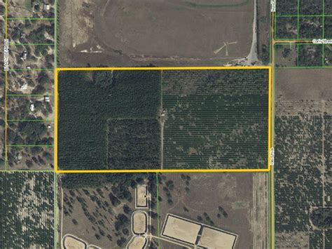 84 6 acres near hamlin west farm for sale winter