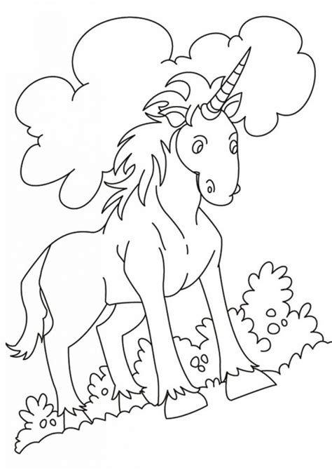 believe in miracles a unicorn coloring book unicorn coloring books volume 1 books 40 magical unicorn coloring pages