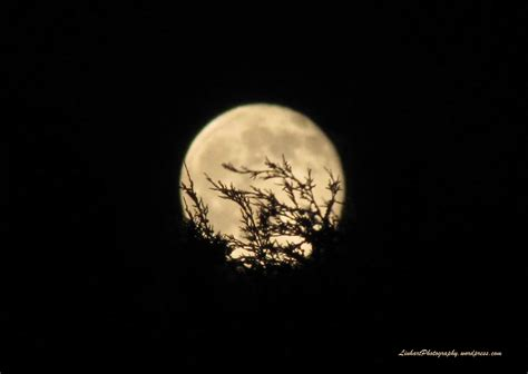 Moon Friday friday the 13th moon linhart photography