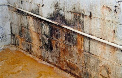 preventing mold in basement rec rooms 101 the real way to prevent dangerous mold in your finished basement baileylineroad
