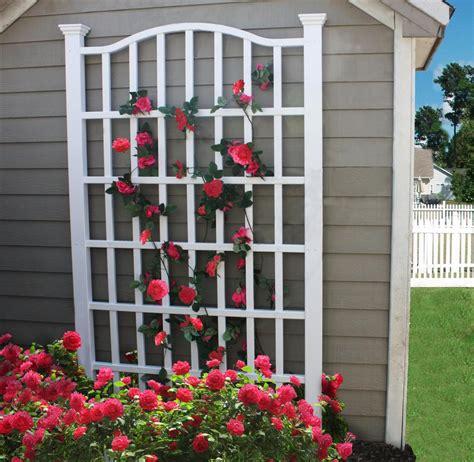 trellis florist new arbors decorative garden flower plant white