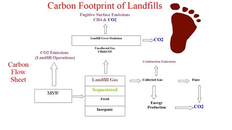 Carbon Footprint Calculator For Worksheet by Carbon Footprint Calculator For Www Imgkid