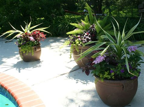 pool deck outdoor pots and planters st louis