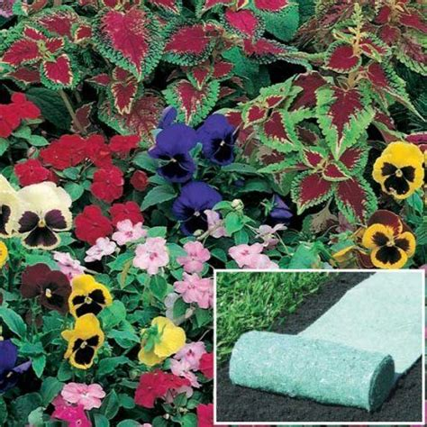 Flower Roll Out Mat by Pin By Randy Benitez On Garden Gardening