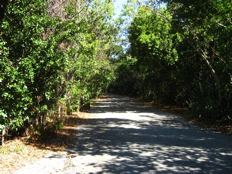Key Largo Botanical Garden Key Largo Botanical Garden Eco Tourism In Key Largo Discover Our Vast Playground Next To