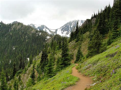 Engginer Monting Rr New X Trail introducing one of the best undiscovered half marathons in washington state