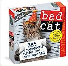 bad cat colour page a day 0761188258 bad cat colour page a day calendar 2017 amazon co uk workman 9780761188254 books