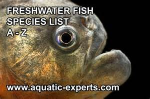 FRESHWATER FISH b rings you a database of all the freshwater fish that