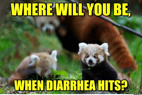 Red Panda Meme - that would be panda monium by recyclebin meme center