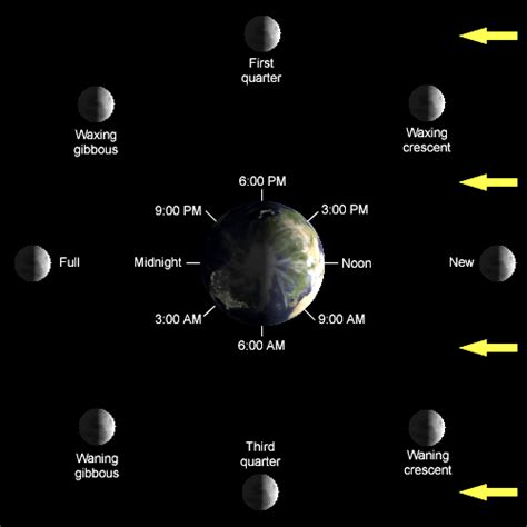 moon phases diagram eli5 if i can see the moon and the sun in the middle of