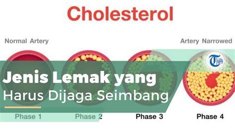 kolesterol jenis lemak ditemukan   sel tubuh