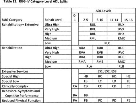 Rehab Rug Levels by Federal Register Medicare Program Prospective Payment