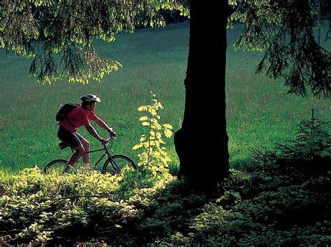 come dimagrire nel sedere andare bici fa dimagrire pancia bici per dimagrire la