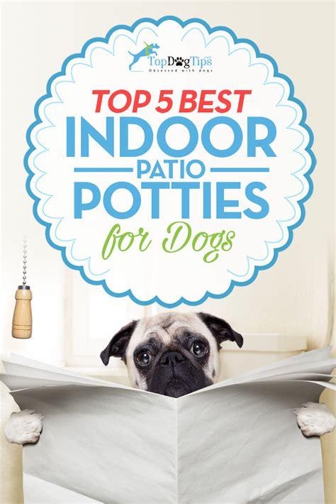 best indoor potty best indoor pet patio potty for dogs top 5 toilet solutions 2017