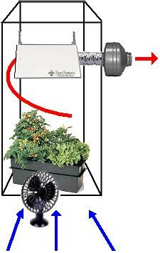 grow room air circulation how to set up exhaust cultivate colorado