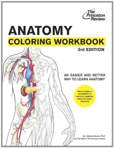 anatomy coloring book 4th edition pdf anatomy coloring workbook 3rd edition coloring workbooks