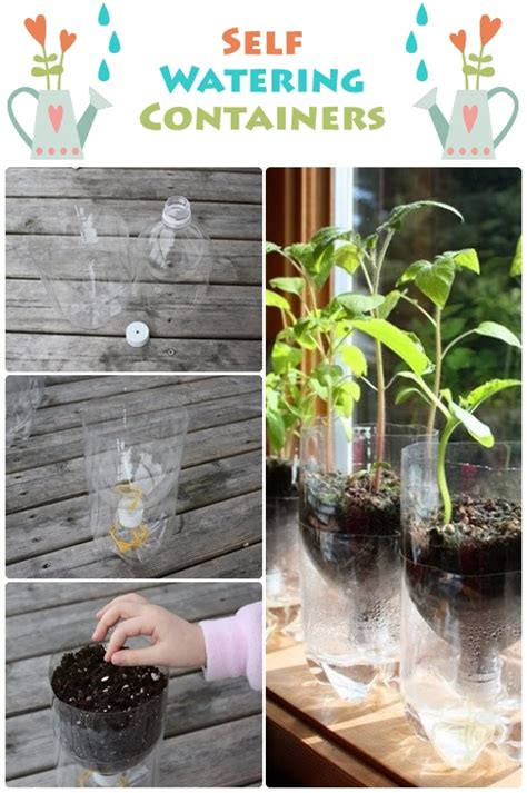 how do self watering planters work self watering containers dream garden 101