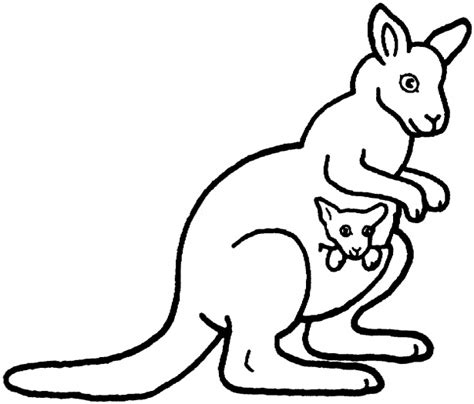 Kangaroo Coloring Pages Getcoloringpages Com An For Coloring