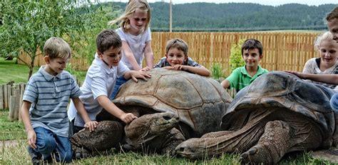 Reptile Garden South Dakota by Animal Park Black Attraction Reptile Gardens