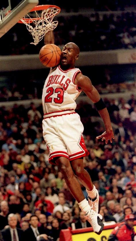 Famouse Mba Players Before Michael by Michael Basketball The Bull