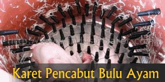 Harga Mesin Pencabut Bulu Ayam Jakarta industri karet perusahaan pengolahan karet pabrik karet