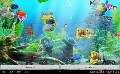 live wallpaper for pc aquarium awesome fish tank live wallpaper
