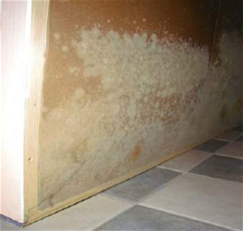 sauna im keller feuchtigkeit schimmelbefall1