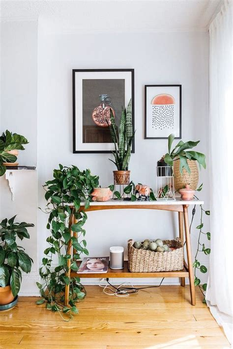 plants for apartments the 25 best ideas about golden pothos on pinterest