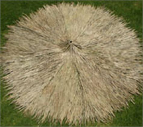 Palapa Thatch Replacement Palapa Thatch Materials Accessories Menu Palapa Thatch