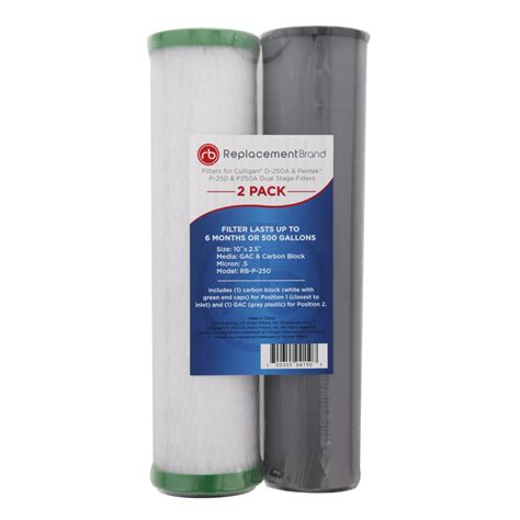 ReplacementBrand RB-P-250 Comparable Filter for the ... D 250a