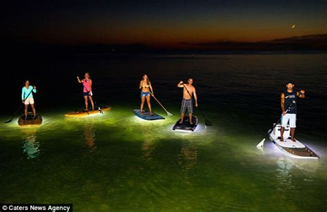 cost to install underwater boat lights nocqua 2000 led paddle boards allow enthusiasts to head