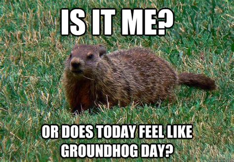 groundhog day theory two teachers in