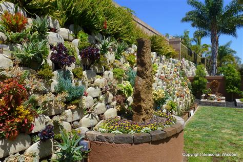 Succulent Gardens by Vertical Succulent Garden Saves Space Looks Great
