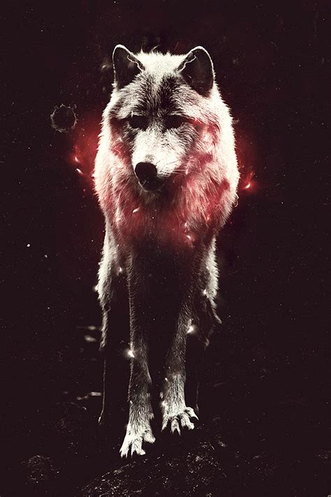 wallpaper iphone 5 wolf freeios7 the wolf parallax hd iphone ipad wallpaper