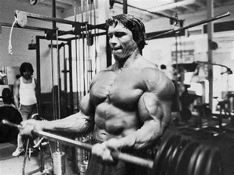 Golds Bench Wallpaper Sea Arnold Schwarzenegger Wallpaper Hd