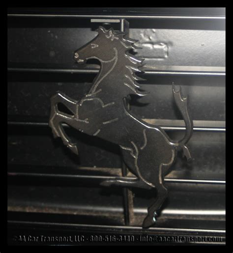ferrari horse vs mustang 100 ferrari horse vs mustang horse dancing horse