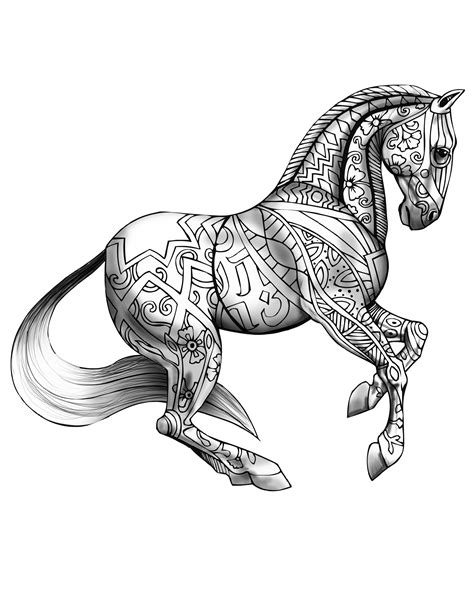 coloring pages for adults horses coloring book page butterfly fish coloring page for