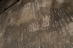 file auschwitz i gas chamber scratches on wall 2 jpg