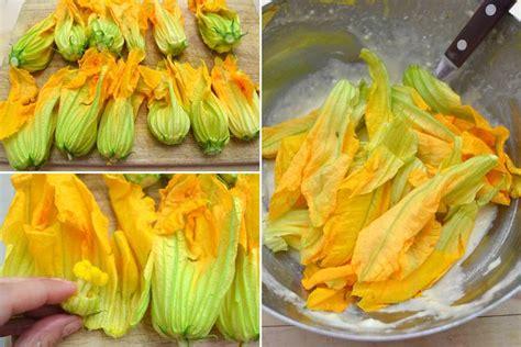 frittelle di fiori di zucca 187 frittelle di fiori di zucca ricetta frittelle di fiori