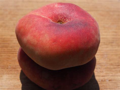Pome Buah gambar apel menanam matang makanan merah