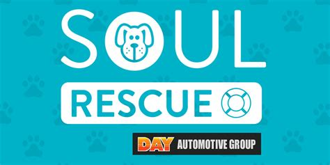 soul rescue soul rescue adopt a pittsburgh pet in need of a loving home whirl magazine pittsburgh