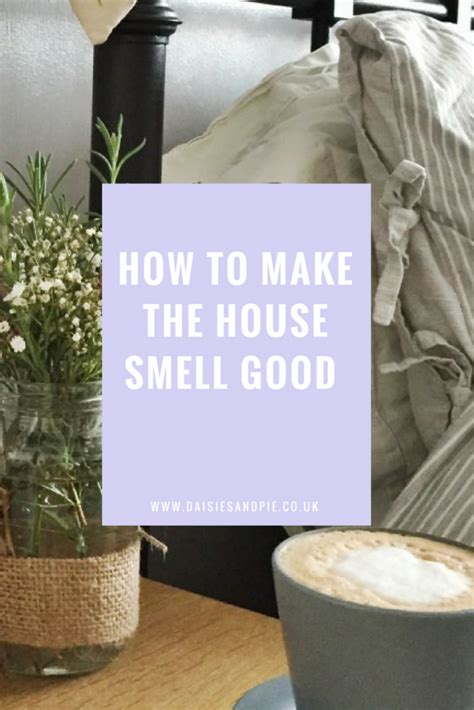 how to make house smell good how to make your house smell good daisies pie
