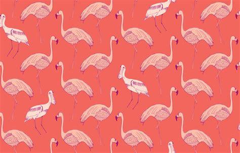 flamingo print wallpaper animal wallpapers