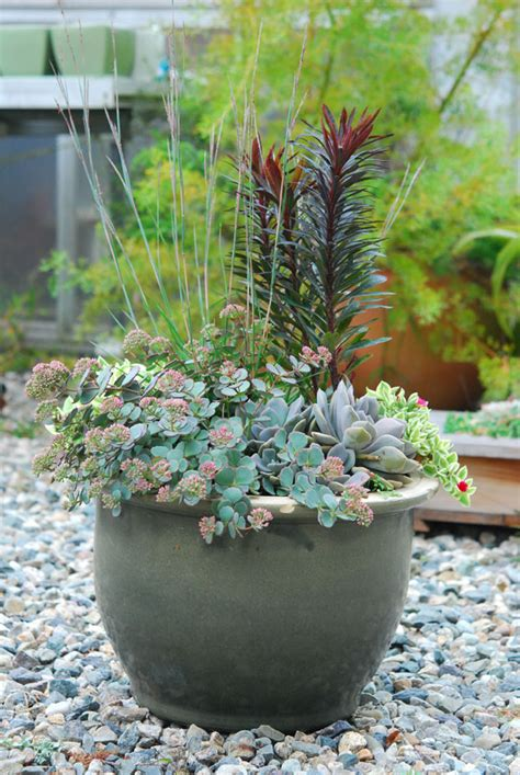 container ideas garden foreplay