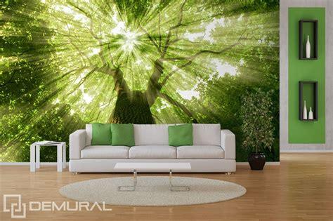 tree wallpaper for walls uk sunbeams in greenery forest wallpaper mural photo